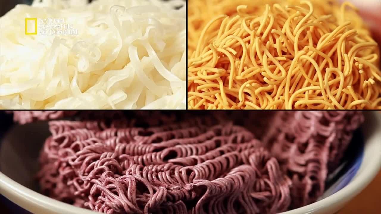 ملفات الغذاء HD :النودلز - موقع علوم العرب