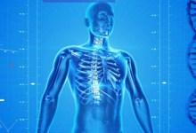 مقال - 9 حقائق مذهلة عن جسم الإنسان قد لا تعلمها