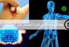 مقال – 5 حقائق مذهلة عن قدرة الجسم على العلاج الذاتي