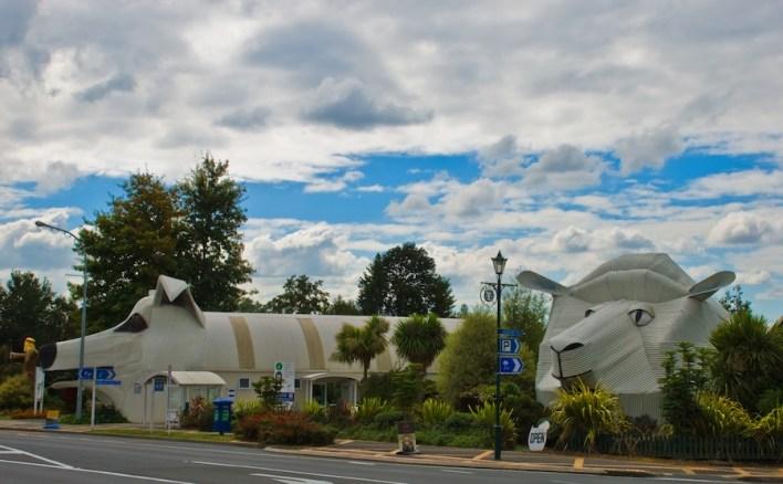 مبنى الخروف و مبنى الكلب - (Tirau, Waikato, New Zealand)