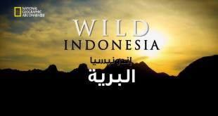 إندونيسيا البرية HD : عالم بابوا الضائع