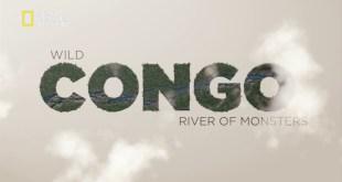 الحياة البرية في الكونغو HD : عمالقة النهر