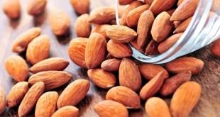 مقال - اللوز صحي ومغذٍ و يساعد على خفض الوزن