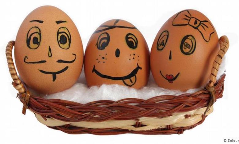 مقال - البيض ... مفيد للصحة رغم سمعته السيئة