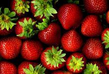 مقال - فوائد الفراولة التي قد تجعلك تدمن على أكلها