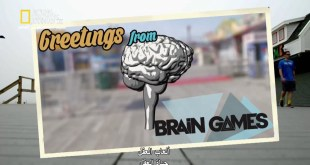 ألعاب العقل HD : حياة العقل