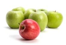 صورة مقال – لماذا يغني تناول التفاح بانتظام عن زيارة الطبيب؟