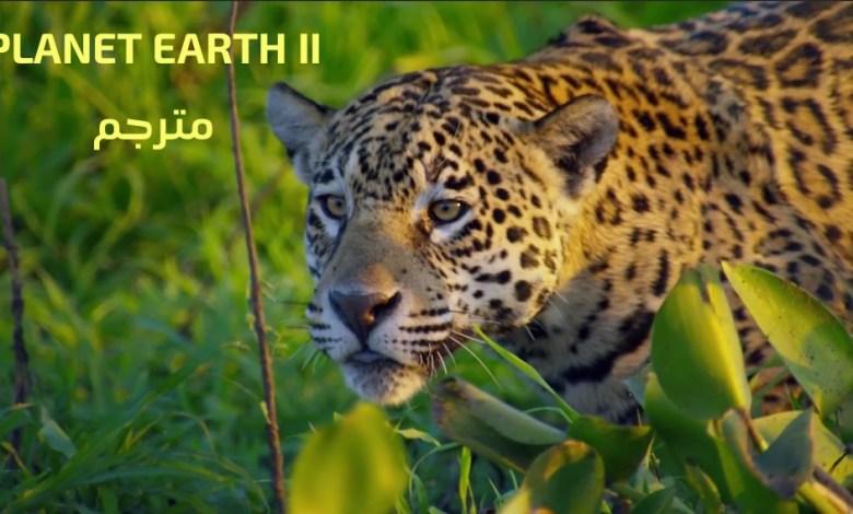 مترجم - كوكب الارض الجزء الثاني : ح1 الجزر