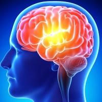 مقال - أغذية تساعد على تقوية الذاكرة