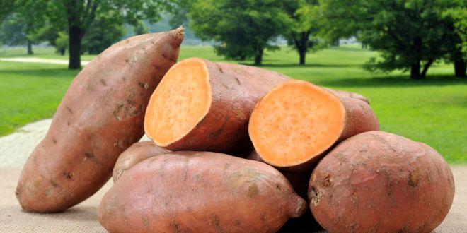 مقال : 7 فوائد صحية لتناول البطاطا الحلوة!