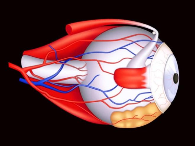 عدم توزيع المادة الدمعية على جميع أجزاء العين بشكل متساو يؤدي لعدم إمداد القرنية والملتحمة والأجزاء الداخلية من الرموش بالمواد الغذائية اللازمة لها