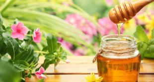 مقال - هذا مايفعله الماء بالعسل في جسمك!!