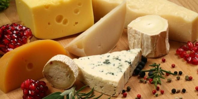 مقال - هذه فوائد الجبنة و مضارهامقال - هذه فوائد الجبنة و مضارها