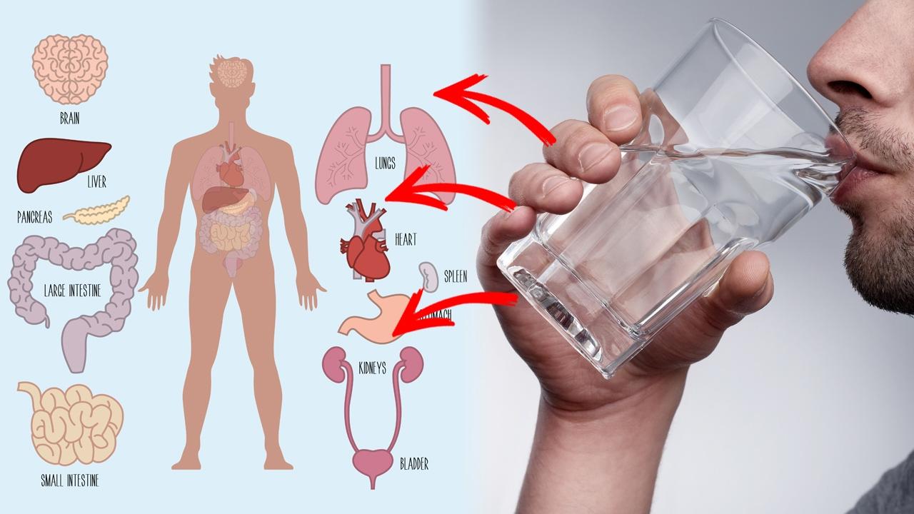 مقال – هل الماء الساخن علاج لبعض الأمراض؟