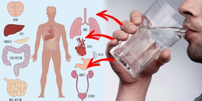 مقال - هل الماء الساخن علاج لبعض الأمراض؟