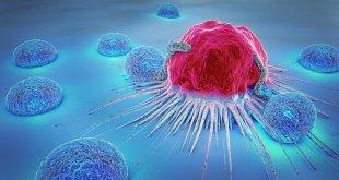 مقال – العلاج المناعي Immunotherapy .. سلاحك لمحاربة الحساسية