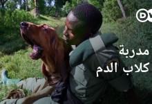 صورة كلاب الدم كحراس للبرية