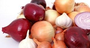 مقال – أيهما أفضل لصحة الإنسان..البصل الأحمر أم الأبيض؟