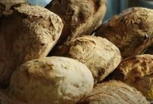 فن صناعة الخبز