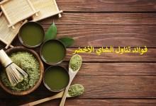 فوائد لا تحصى لتناول الشاي الأخضر يومياً… تعرفوا عليها!