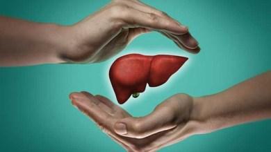 7 مشروبات طبيعية تعزز صحة الكبد دون الحاجة للأدوية