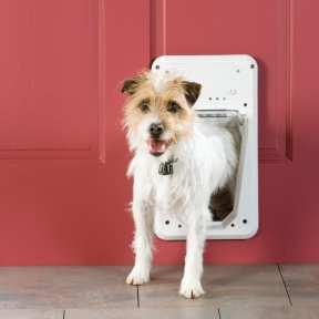 Petsafe الابواب الذكية - تقنيات المنازل الذكية للحيوانات الأليفة