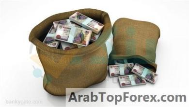 """صورة بحد أدنى 1000 جنيه وعائد تراكمي يصل لـ 200%.. تفاصيل شهادات الادخار التراكمية من """"الاستثمار العربي"""""""
