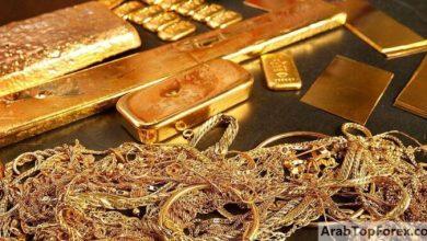 صورة الذهب يبلغ أعلى سعر في التاريخ