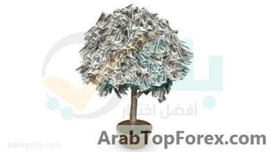"""صورة أسعار الفائدة على حساب توفير جولدن باليورو من """"العربي الإفريقي الدولي"""""""