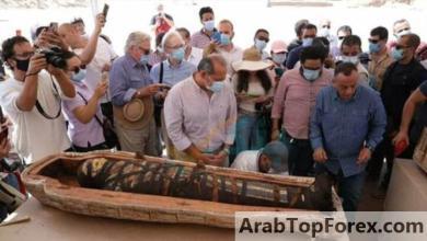 صورة البنك الأهلي يرعى المؤتمر الصحفي للإعلان عن أكبر اكتشاف أثري في 2020 بمنطقة سقارة «صور»