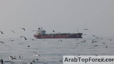 """صورة النفط ينزل من """"أعلى مستوياته"""" في أشهر"""