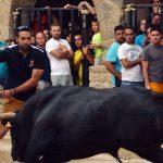13 pueblos de Teruel con festejos taurinos este fin de semana