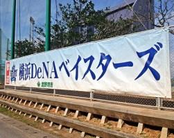 横浜DeNAベイスターズ 春季キャンプの楽しみ方