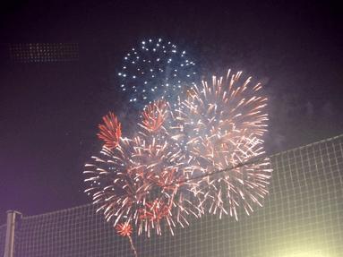 バレンティン52号!(2013/8/30@明治神宮野球場 東京ヤクルトスワローズ対横浜DeNAベイスターズ)