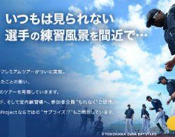 横浜DeNAベイスターズ 春季キャンプツアー2014でキャンプに行こう