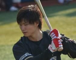 2014年 北海道日本ハムファイターズの沖縄春季キャンプメンバー割