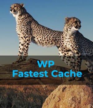 WordPress website optimization plugin