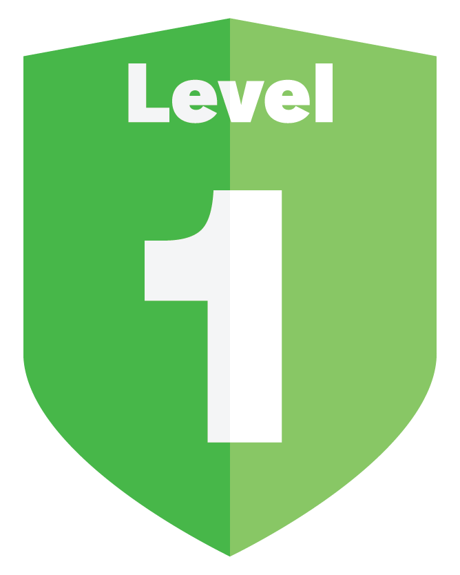 Application Security Levels