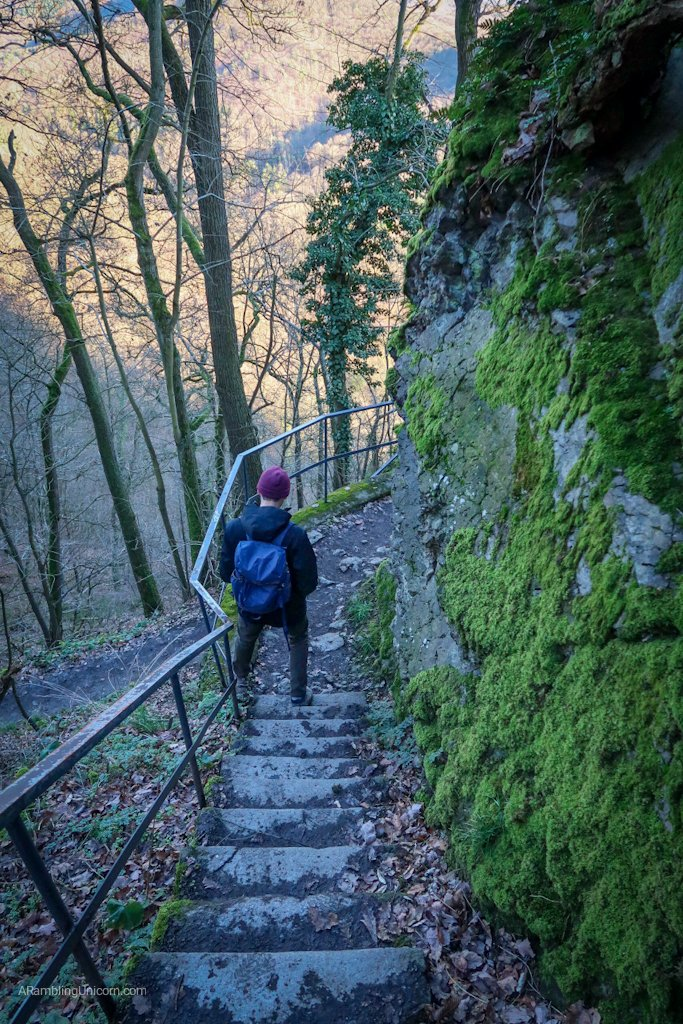 Hiking down the other side of Dragon Rock towards Rhöndorf Station