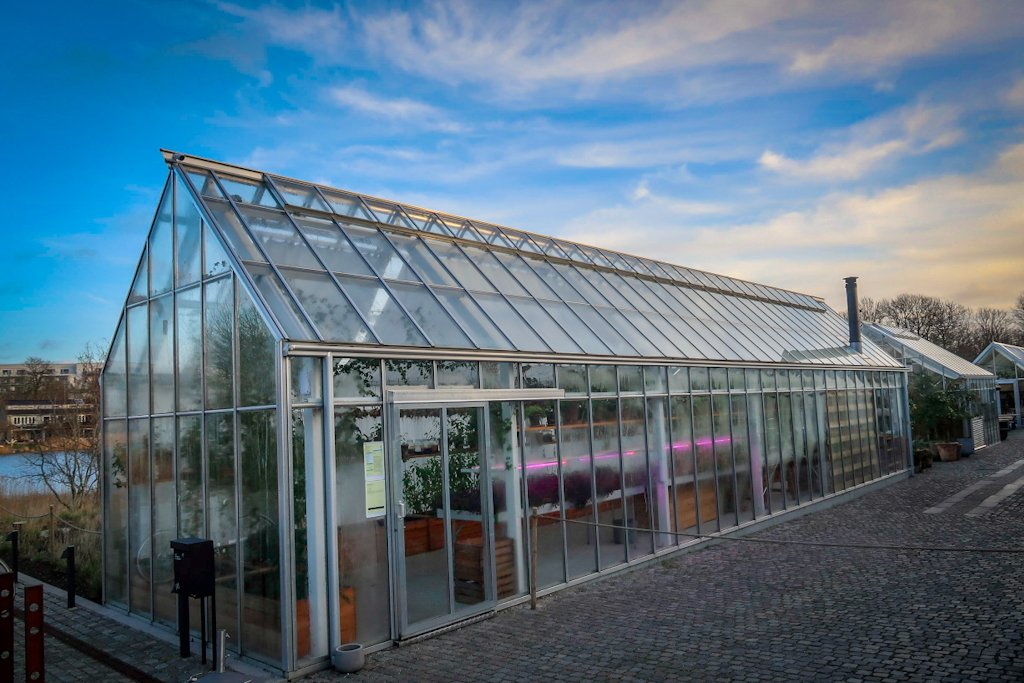 The NOMA greenhouse. This is where you wait to be seated upon arrival.