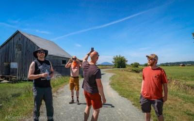 Padilla Bay Shore Trail: A Great Hike for Social Distancing