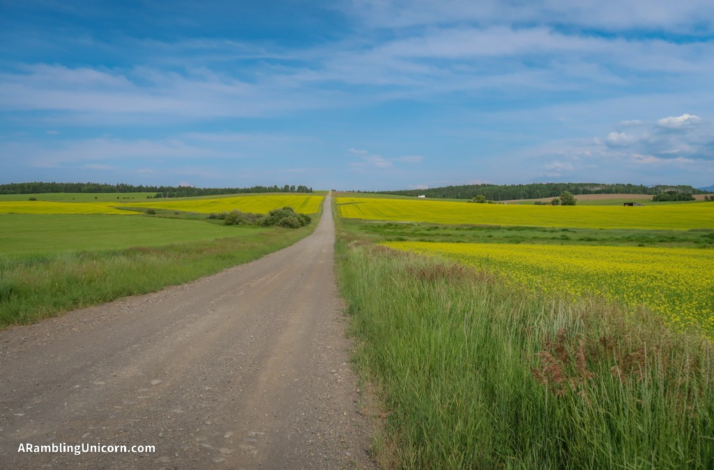Ashton-Flagg Ranch Road: A Long and Bumpy Road to Grand Tetons