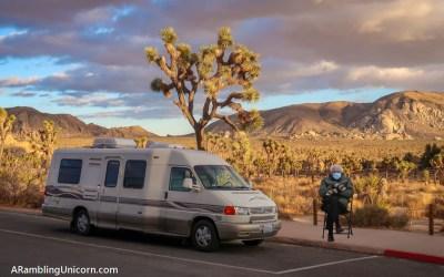 Joshua Tree Road Trip: A Surreal Travel Day
