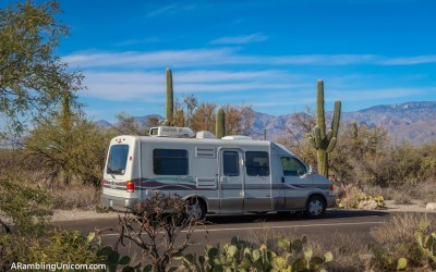 Saguaro National Park Itinerary: 3 Days in the Desert