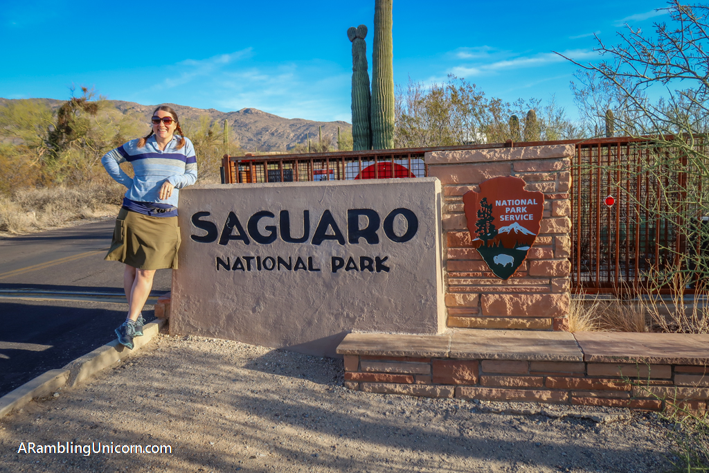 Unicorn stands in front of the Saguaro National Park sign