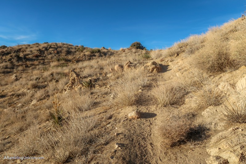 The trail climbs uphill towards South Park Peak