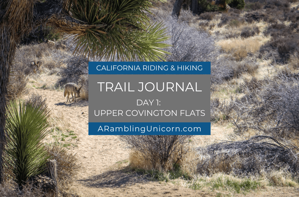 Upper Covington Flats: Day 1 on the California Riding and Hiking Trail