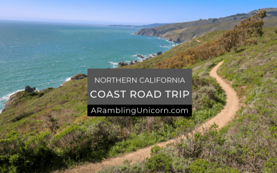 Northern California Coast Road Trip: Driving the Pacific Coast Highway