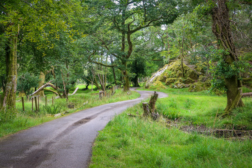 A narrow road meanders through a green field that is populated with a few trees and a mossy rock outrcop