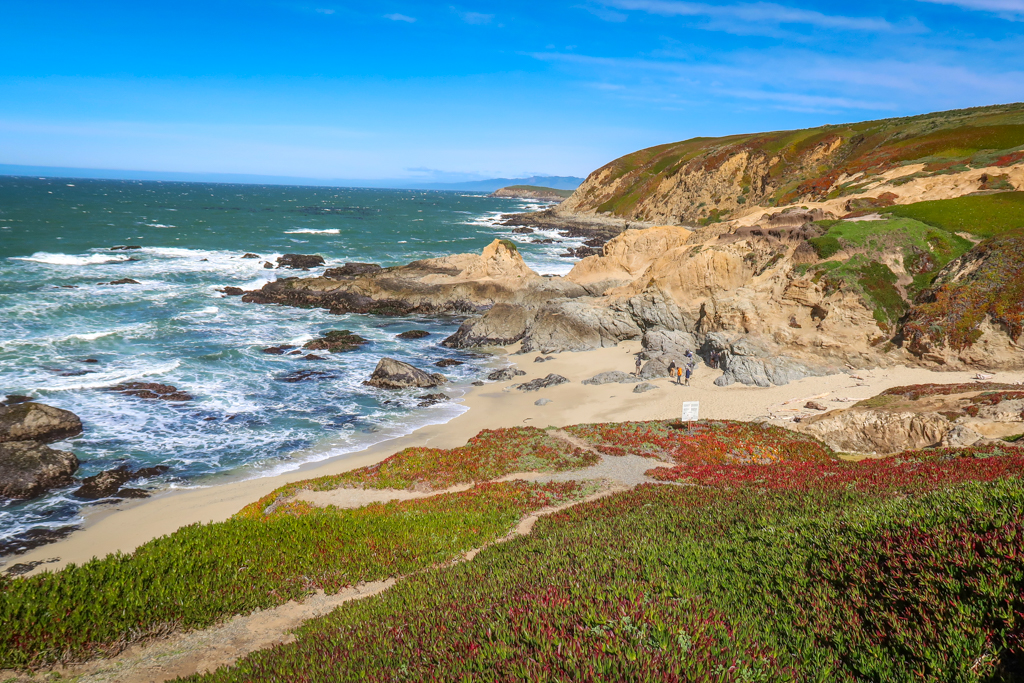 A sandy beach at Bodega Head lined with jagged granite rocks, a great stop on a Northern California Coast Road Trip